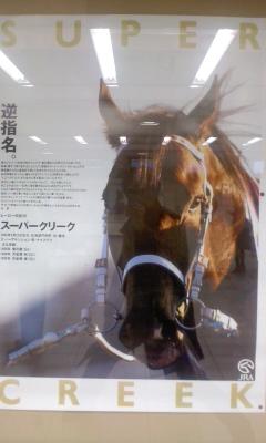 葬儀葬祭業経営コンサルタント中西正人(JRAポスター)