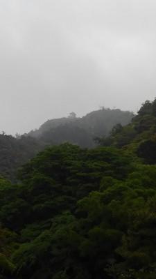 葬儀葬祭業経営コンサルタント中西正人(岐阜城を上る)