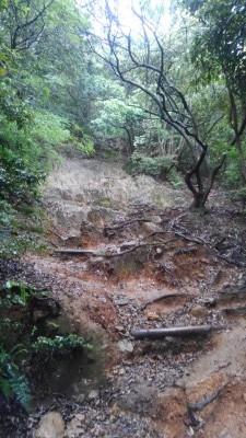 葬儀葬祭業経営コンサルタント中西正人(登山道、道なき道)