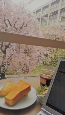 葬儀葬祭業経営コンサルタント中西正人(桜の季節、クリーニング店の繁忙期)